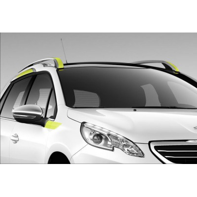 Side of side stickers CITRUS for the upper area Peugeot 2008
