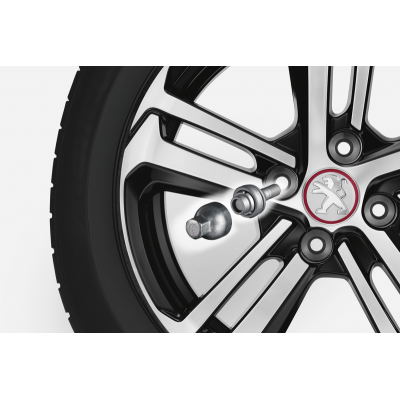 Peugeot safety screws for alloy wheels